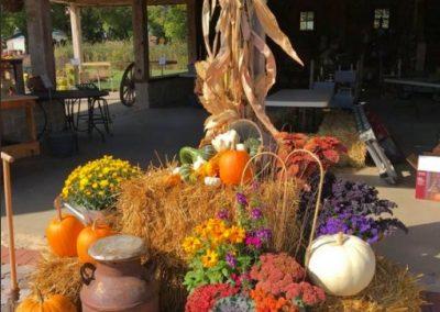 Fall at Hartman Garden Center