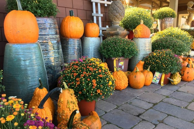 Fall at Hartman Garden Center