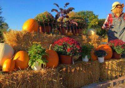 Hartman Garden Center Fall Festival