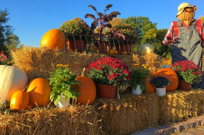 Hartman Garden Center Fall Festival