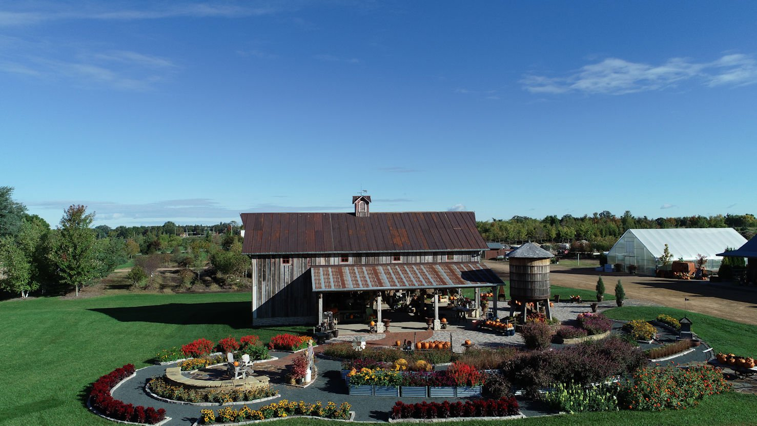 drone view of Hartmans barn, greenhouse, and tree farm